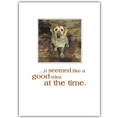 Yellow Lab Sorry Card