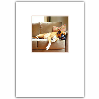 Boxer Love Card