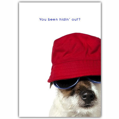 Jack Russell Let's Get Together Card