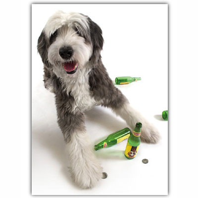 Shaggy Dog Birthday Card