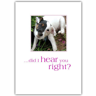 Jack Russell Puppy Birthday Card