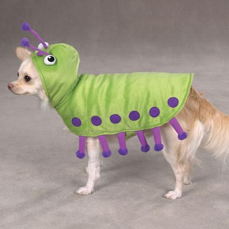 Cutiepillar Dog Costume