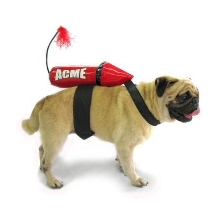 Acme Rocket Dog Costume