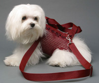Woofle n Beads Burgundy PuppyPurse