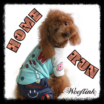 Home Run Dog shirt