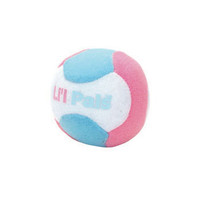 Small Dog Ball Toy