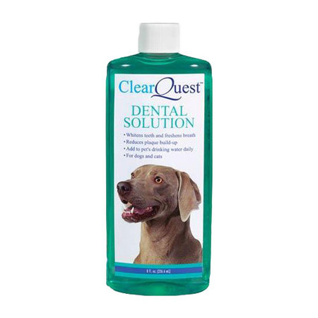 Pet Dental Solution