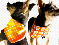 Tiny Rascal Reversible Bandana