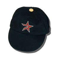 Houston Astros Dog Cap