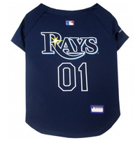 Tampa Bay Rays V-Neck Dog Jersey