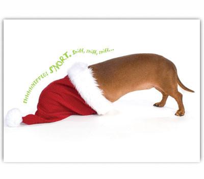 Dachshund Santa Hat Holiday Card