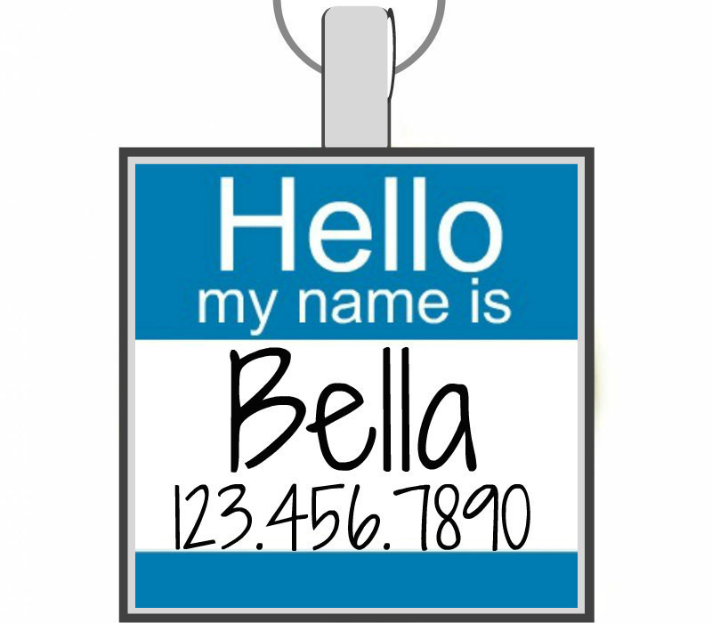 Hello My Name Is Silver Pet Id Tag