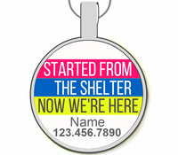 Started from the Shelter Silver Pet ID Tags