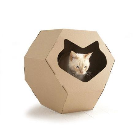 Geodome Cat Habitat