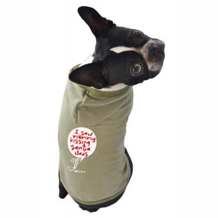 I Saw Mommy Kissing Santa Dog Hoodie