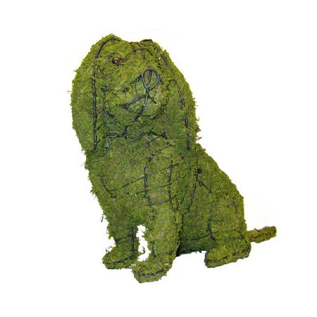 Cavalier King Charles Sitting Dog Topiary