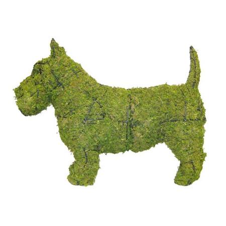 Scottie Dog Topiary