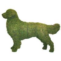 Golden Retriever Dog Topiary