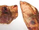 Bravo Pig Ears Dog Chews