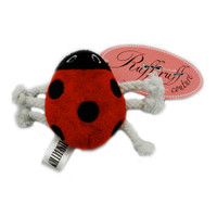 Lucky Lady Bug Toy