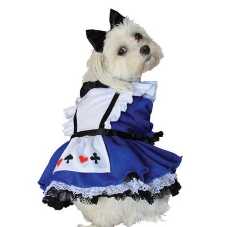 Alice Dog Costume