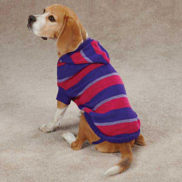 Knitting Patterns For Dog Hoodies : Striped Knit Dog Hoodies