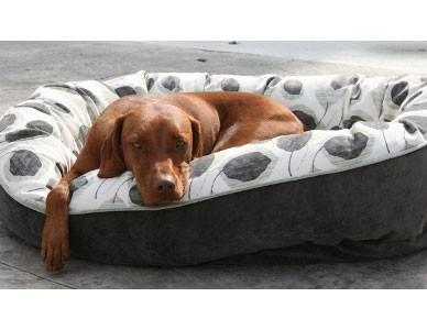 Bowsers Orbit Dog Bed