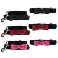 Velvet Bowtie Collar & Lead Collection