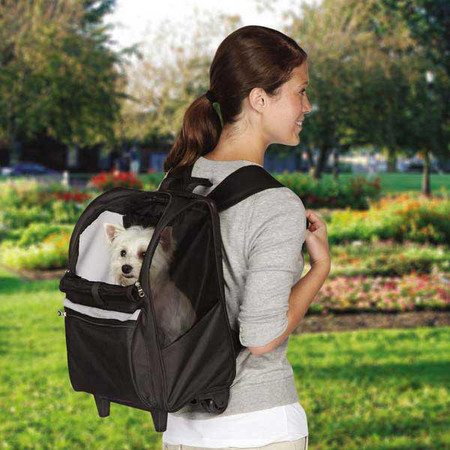 On-The-Go Pet Rolling Backpacks