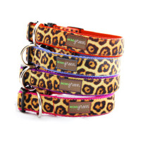 Velvet Leopard Dog Collars and Leads