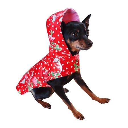 Scarlet Dog Raincoat