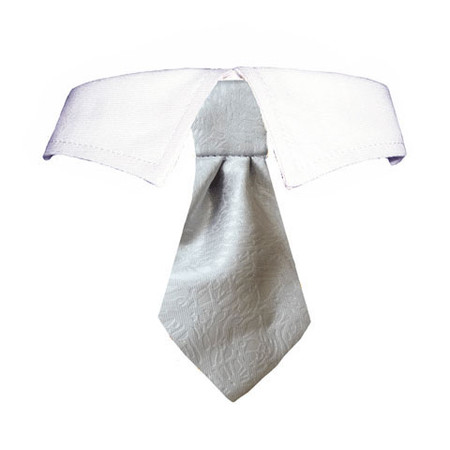 Adam Shirt Tie Collar