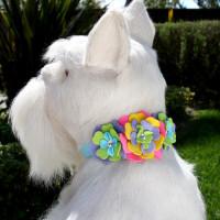 Susan Lanci Fantasy Flower Collar