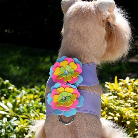 Susan Lanci Fantasy Flower Tinkie Harness