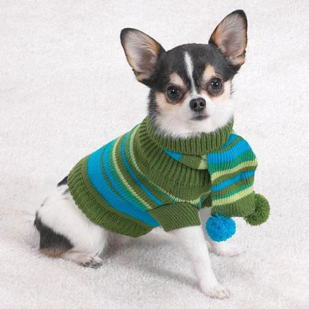 Chilly Day Sweater with Pom-Pom Scarf