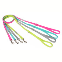 Susan Lanci Crystal Rocks Leash