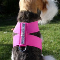 Susan Lanci Crystal Rocks Tinkie Harness