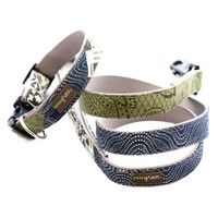 Angus Collar and Lead