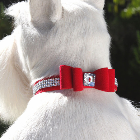 Susan Lanci Giltmore Big Bow Collar