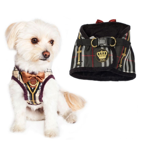 Dogs of Glamour Dapper Boy Suspenders Harness