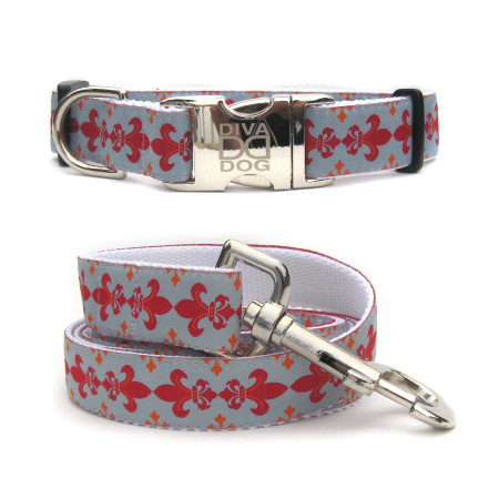 Joan of Bark Collar & Lead