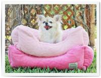 Circle Print Dog Bed
