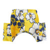 Aruba Dog Swim Trunks