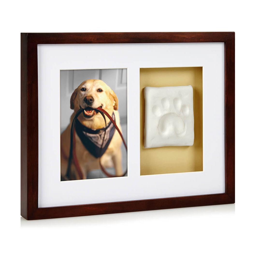 Pawprints Espresso Wall Frame