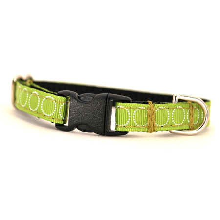 Meadow Petite Dog Collar & Lead