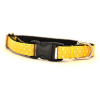 Buttercup Petite Dog Collar & Lead