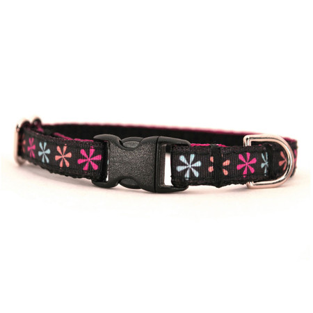 Bella Petite Dog Collar & Lead