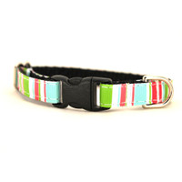 Madison Petite Dog Collar & Lead
