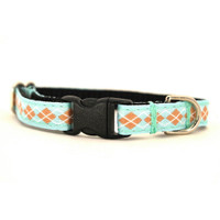 Winston Petite Dog Collar & Lead
