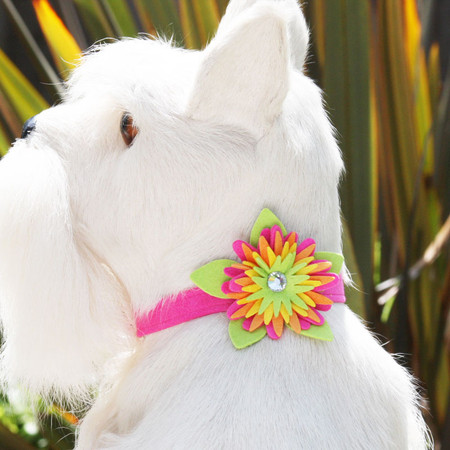 Susan Lanci Island Flower Collar